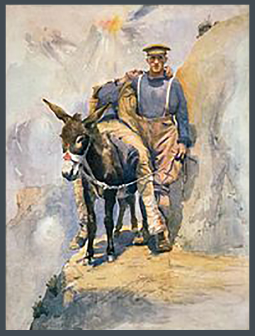Man and his donkey
